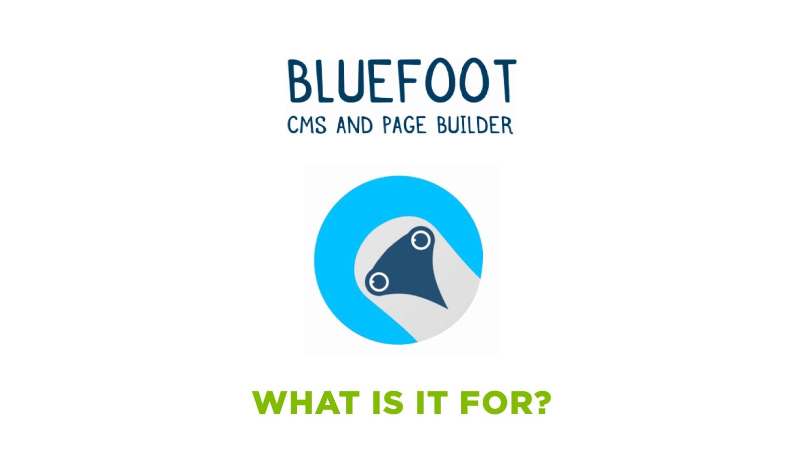 Header_Post_BlueFootv2_EN (1)